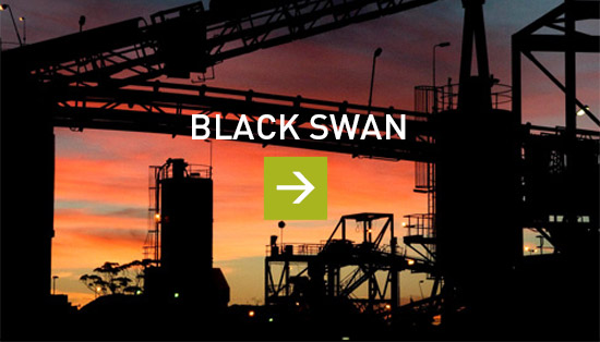 project_blackswan